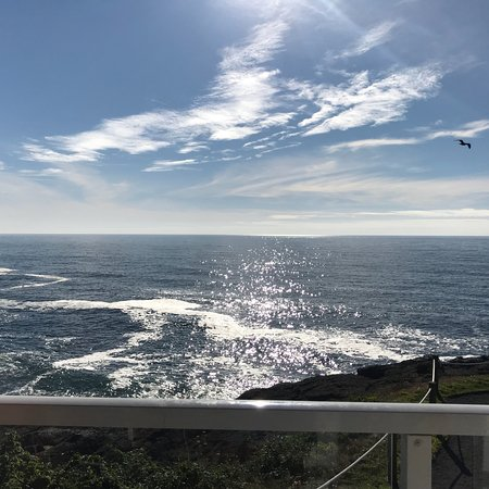 Whale watching, Ocean view condos!