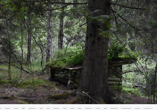 Bodafors, Szwecja: Vindskydd vid naturslingan utmed Emån