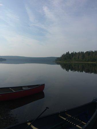 Moose Woods Guide Service-billede