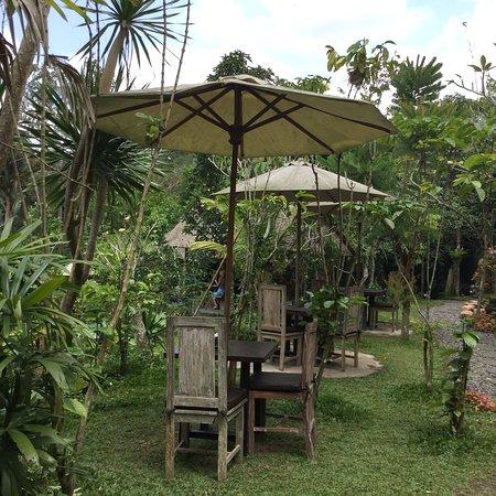 Bedulu, Indonesia: photo2.jpg