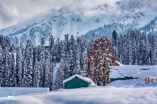 Private 6 Days Royal Kashmir Tour...