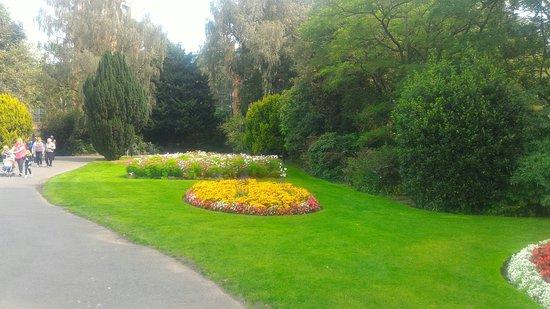 Botanic Gardens: P_20180828_133448_large.jpg