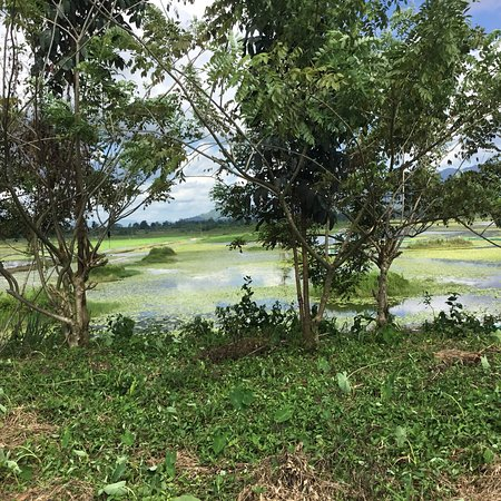 Maguindanao, Philippinen: Marayag on its shallow lakeside.