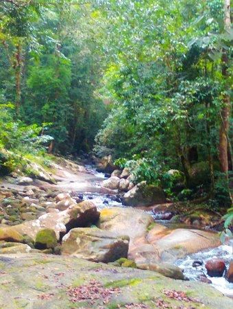 Darulaman Sanctuary