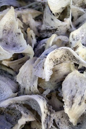 Gomantong Cave Sandakan: Dried bird nests