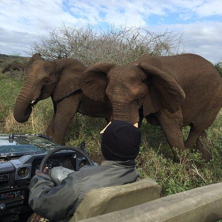 Empangeni, Sydafrika: photo1.jpg