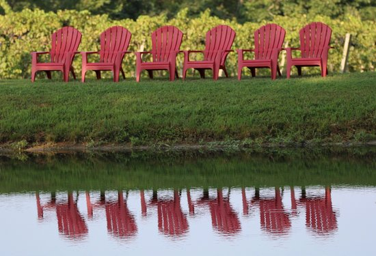 Feather Hills Vineyard & Winery: Lovely view of the stage and pond from this comfy spot