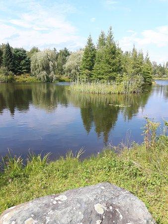 Lac-Brome, Canada: Promenade autour de l`étang
