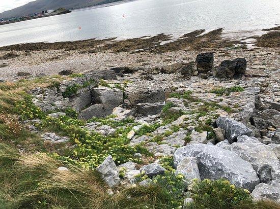 Fenit, أيرلندا: The coast