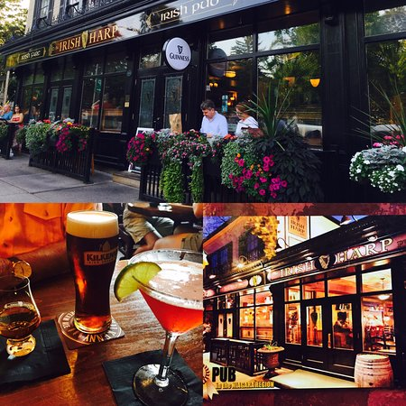 The Irish Harp Pub Photo