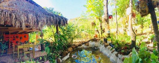 Miracema Do Tocantins, TO: Laguinho artificial com peixes