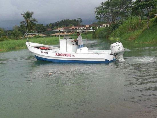 Wahoo Sportfishing Jaco