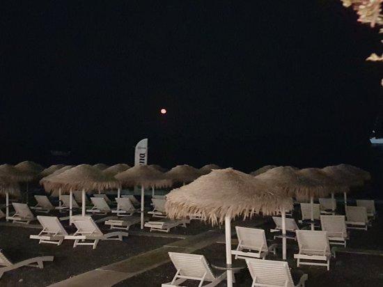 Summertime Restaurant: 20180828_212746_large.jpg