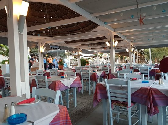 Summertime Restaurant: 20180827_193656_large.jpg