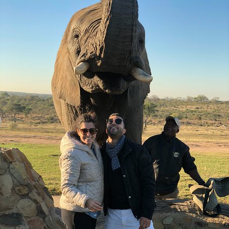 Tours & Safaris