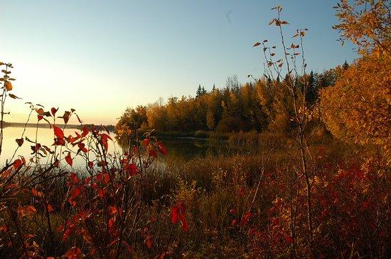 Barrhead, Canada: Thunder Lake Provincial Park.