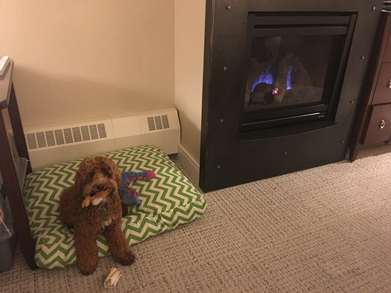 Limelight Hotel Aspen: The gas fireplace was nice on cold nights - even in summer!