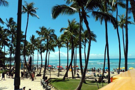 The Unique Waikiki Beach Walk Experience 火奴鲁鲁威基基
