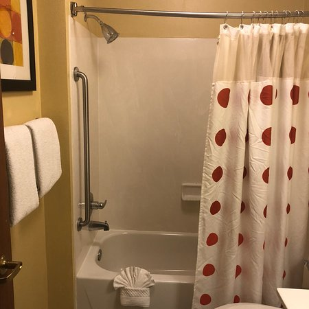 TownePlace Suites Dallas Plano: photo5.jpg