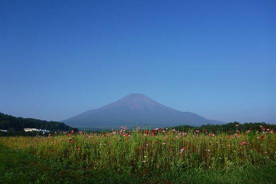 Fuji Bike Tour