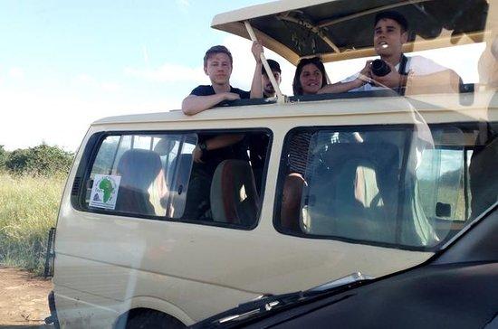 2 dias maasai mara flying safari