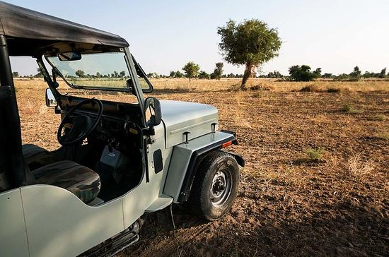 Opplev Jodhpur Village besøk i Jeep...
