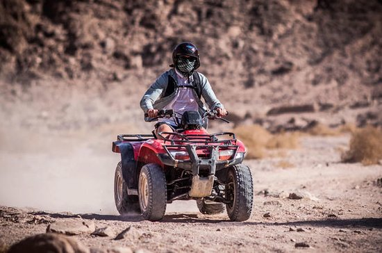 Half-Day ATV / Quad Bike y Camel Ride
