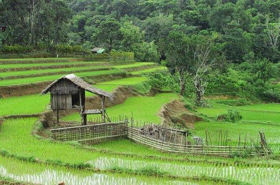 Viaje de descubrimiento de Bali...