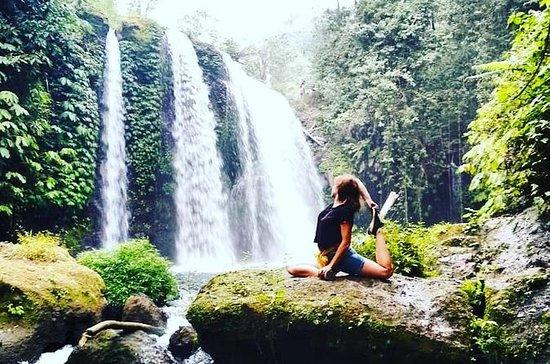 Saba Bali Evergreen Tour gir deg en arv...