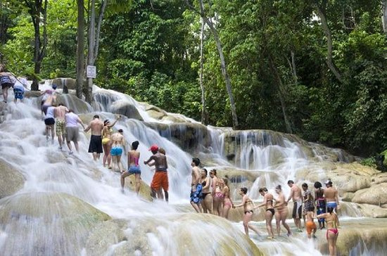 Dunn's River Falls en Jungle River ...