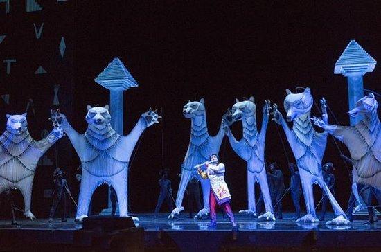 The Magic Flute at the Metropolitan Opera House