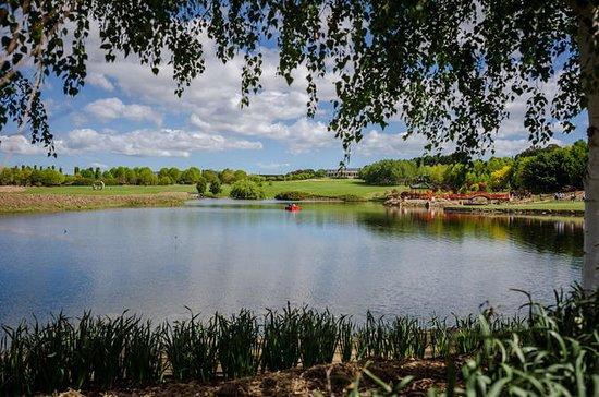 Mayfield Garden Summer Festival Entry