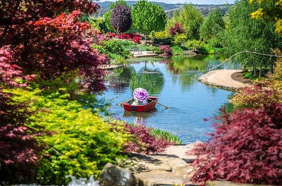 Mayfield Garden Spring Festival Entry