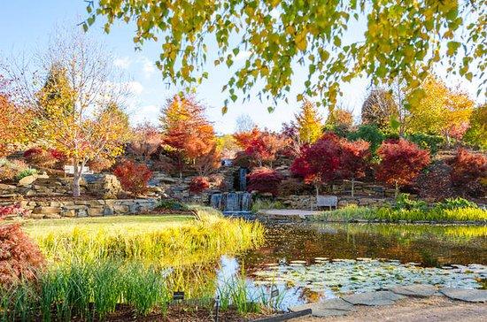 Mayfield Garden Autumn Festival Entry