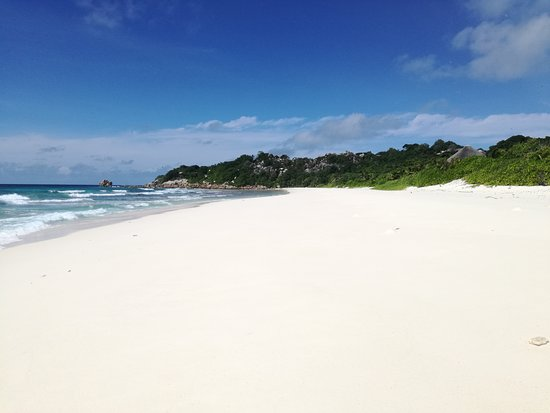 Cousine Island Photo