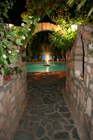 Apollonia Holiday Apartments : pool by night