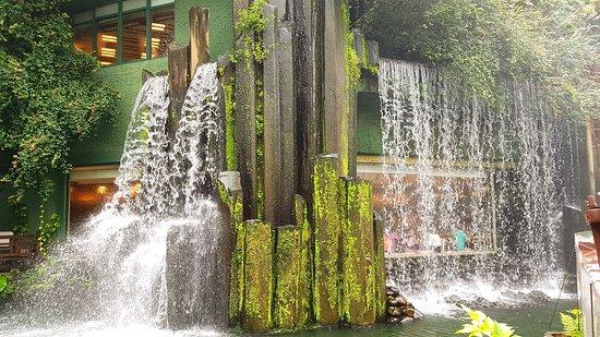 Nan Lian Garden: waterfall over the vegetarian restaurant