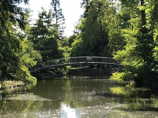 Estanque En El Jardin Public Picture Of Jardin Public Bordeaux - Jardin-con-estanque