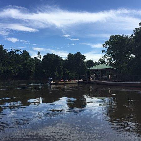 Kabalebo Nature Resort: photo2.jpg