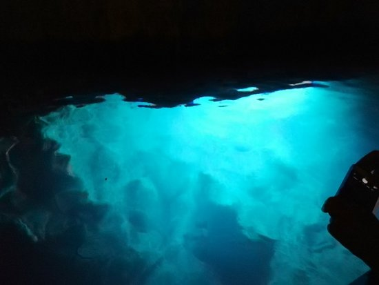 Grotta dello Smeraldo: IMG_20180830_104950_large.jpg
