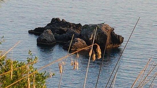 Фотография Il Sentiero Apprezzami l'Asino