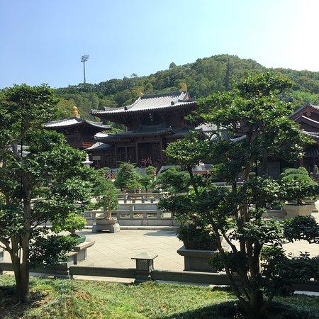 Nan Lian Garden: photo1.jpg