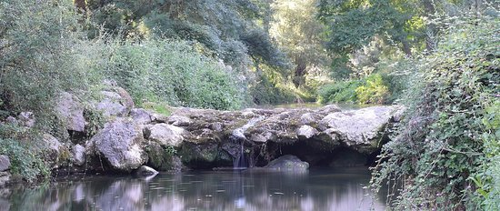 Dauphin, Frankreich: Petite rivière qui traverse le campin