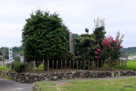 Sakaide, Japan: 讃岐国府跡  坂出市府中町5059