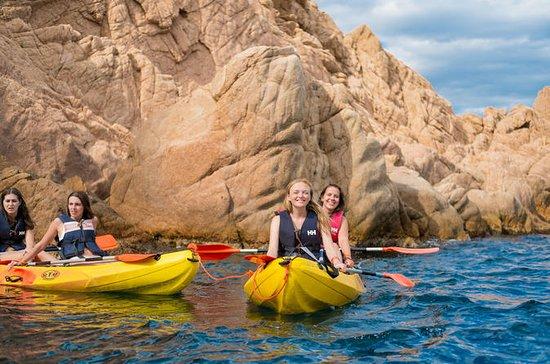 Barcelone: excursion en kayak et...