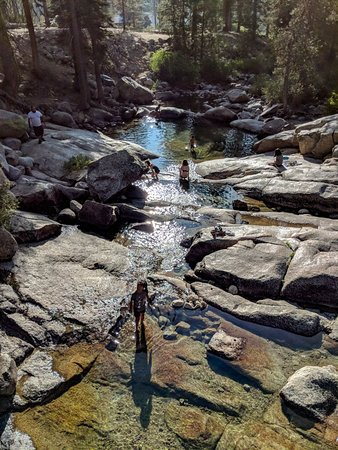 Lodgepole Campground: Underneath the bridge that crosses the river