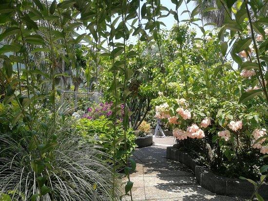 The Secret Garden Utama