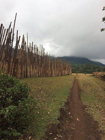 The Usambara Mountains on a cloudy day = still beautiful