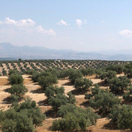 Balneario de Alhama de Granada: Source naturelle d'eau  chaude à 2 km de la location con argua termal , endroit pas entretenu et