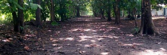 Kalakpa Nature Reserve – fotografia